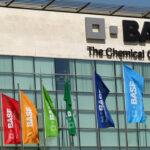 grupo BASF