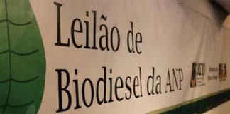 leilão de biodiesel