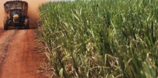 Produção de etanol no centro-sul em 18/19 deve crescer para até 29 bi litros, diz Unica
