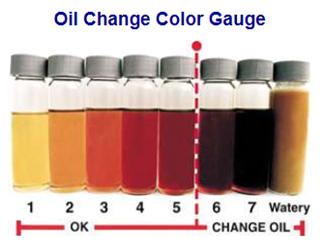 Figura 2 - Degradação e contaminação causam mudanças na coloração