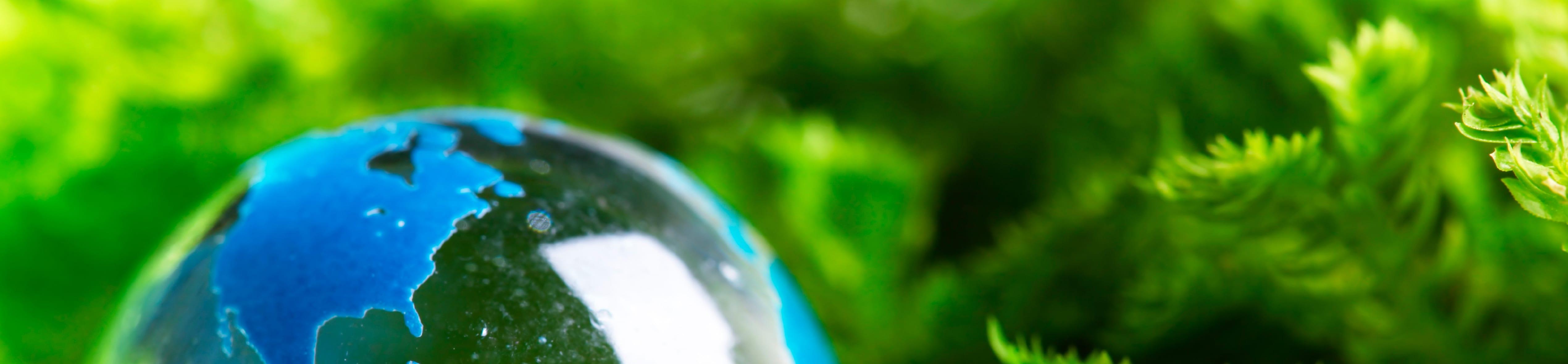Baixas viscosidades e as emissões de carbono