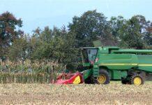 etanol de milho do Brasil